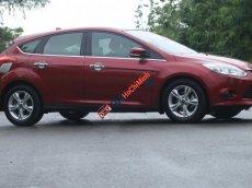 Bán Ford Focus 1.6AT đời 2014, màu đỏ
