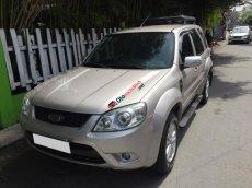 Cần bán Ford Escape XLS đời 2012, màu bạc