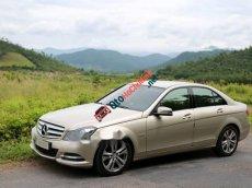 Cần bán lại xe Mercedes C200 đời 2012, màu vàng cát