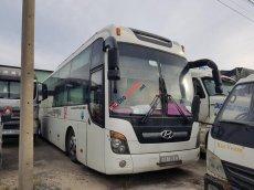 VPbank thanh lý Hyundai Tracomeco 40 giường đời 2010, màu trắng, nhập khẩu