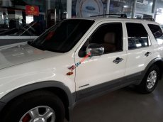 Bán xe Ford Escape 3.0 V6 2002, màu trắng