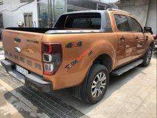 Cần bán Ford Ranger Wildtrack năm sản xuất 2019, nhập khẩu, giá chỉ 889 triệu