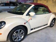 Cần bán Volkswagen New Beetle 2.5 AT đời 2007, màu kem (be), nhập khẩu giá cạnh tranh