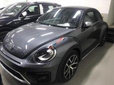 Bán Volkswagen New Beetle cao cấp đời 2019, màu xám (ghi), xe nhập