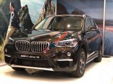 Bán BMW X1 đời 2019, xe nhập