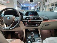 Bán ô tô BMW X4 xDrive20i sản xuất năm 2019, màu xanh lam, xe nhập
