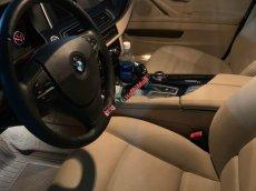 Chính chủ bán BMW 5 Series 520i 2014, màu trắng, nhập khẩu
