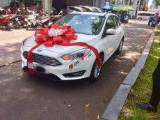 Bán Ford Focus Titanium 2019, màu trắng, giá tốt