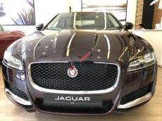 Cần bán xe Jaguar XF 2019, nhập khẩu nguyên chiếc