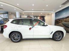 Bán BMW X3 đời 2019, nhập khẩu, giá tốt