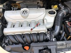 Bán Volkswagen Beetle đời 2006 giá cạnh tranh